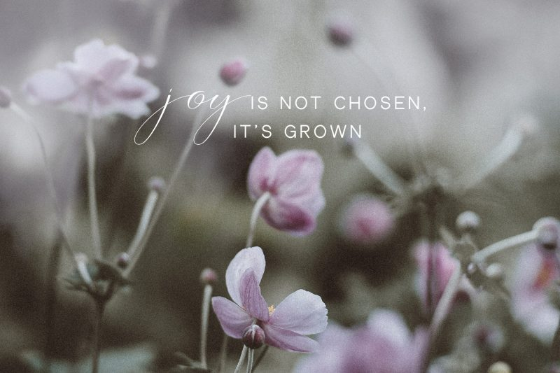 joy is not chosen it is grown