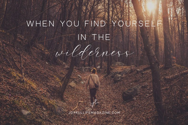 When You Find Yourself in the Wilderness   Christina Painter