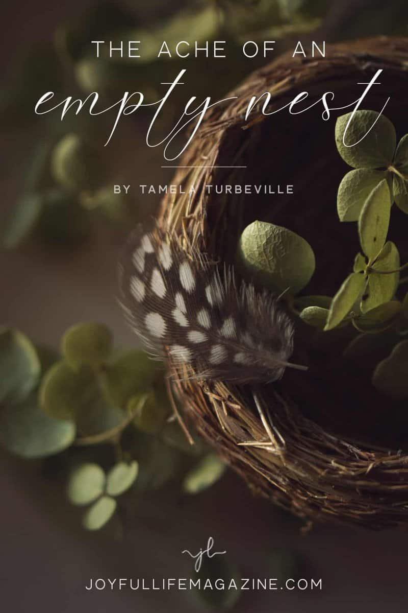 The Ache of An Empty Nest   by Tamela Turbeville   The Joyful Life Magazine