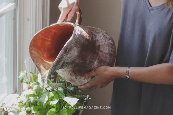 Planted by Water: Going Deeper in a Dry Season   by Carina Alanson   The Joyful Life Magazine