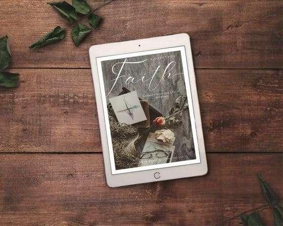 Footsteps of Faith Digital Study Guide   The Joyful Life