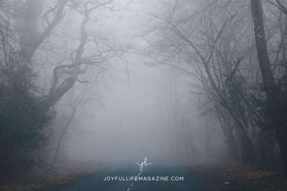 Getting Lost in Jesus | by Elizabeth Forshee | The Joyful Life Magazine