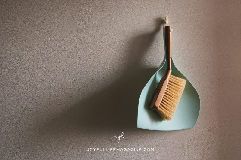 Teal dustpan and hand brush hanging on a wall