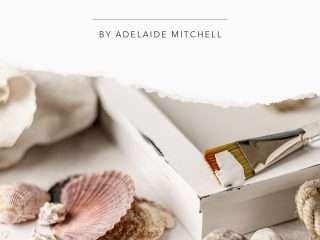 seashell shadow box diy